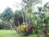 4901 Hanalei Plantation Rd - Photo 8
