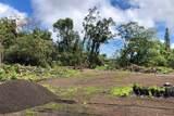 Pahoa Village Road - Photo 20