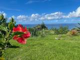 Hawaii Belt Rd - Photo 14