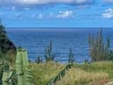 Hawaii Belt Rd - Photo 7