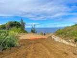 Hawaii Belt Rd - Photo 9