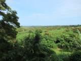 3-3400 Kuhio Hwy - Photo 26