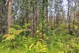 16-1071 Opeapea Rd (Road 7) - Photo 28