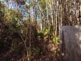 Io Kea Rd (Road 4) - Photo 21