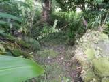 12-7043 Kaiau St - Photo 15