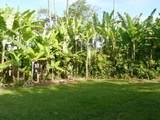 28-1097 Old Mamalahoa Hwy - Photo 5