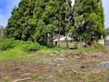 Maunanani Pl - Photo 12