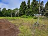 Maunanani Pl - Photo 23