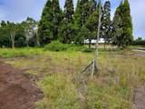 Maunanani Pl - Photo 26