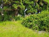 Maunanani Pl - Photo 5