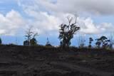 92-8437 King Kalakaua Ln - Photo 2