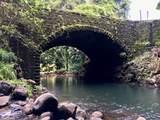 289 Wainaku St - Photo 3