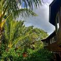 5498-C Puulima Rd - Photo 30