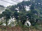 245 Wainaku St - Photo 7
