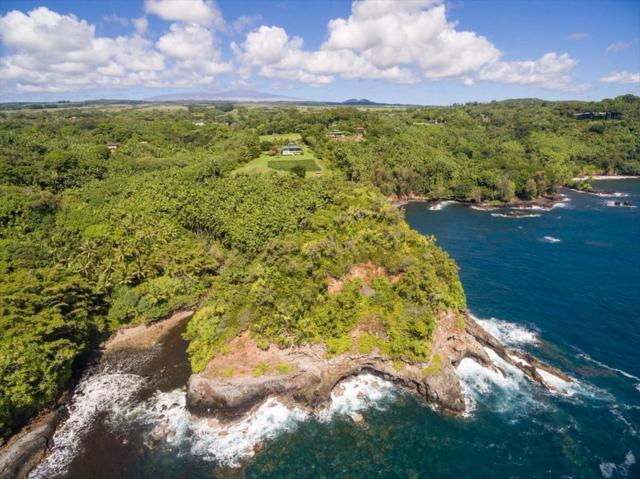 27-604 Alakahi Pl, Papaikou, HI 96781 (MLS #607744) :: Aloha Kona Realty, Inc.