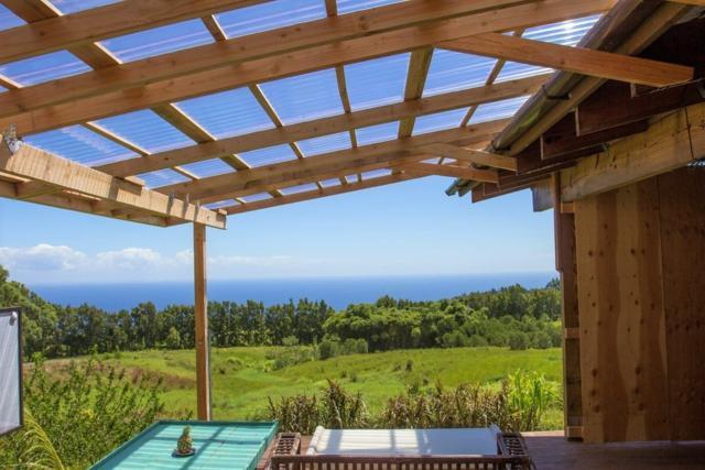 35-541 Kapehu Rd, Laupahoehoe, HI 96764 (MLS #609316) :: Elite Pacific Properties