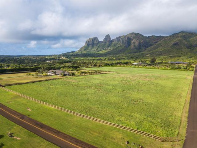 5353 Kalalea View Dr, Anahola, HI 96703 (MLS #609440) :: Kauai Exclusive Realty