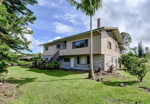 17-4191 Kukui Camp Rd, Mountain View, HI 96771 (MLS #609919) :: Elite Pacific Properties