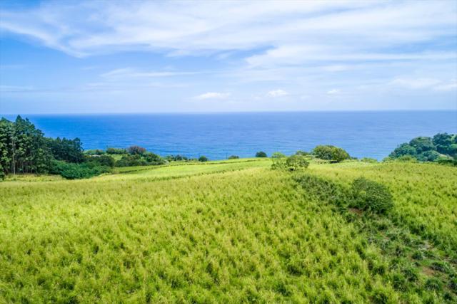 Pali Nana Rd., Papaaloa, HI 96780 (MLS #610067) :: Elite Pacific Properties
