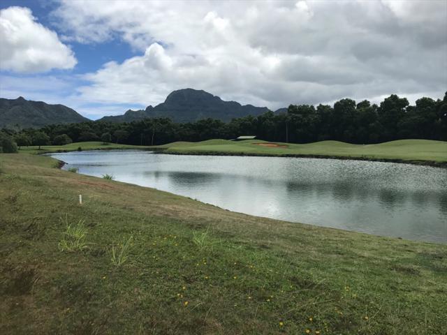 Pili Mai, Lihue, HI 96766 (MLS #610068) :: Kauai Exclusive Realty