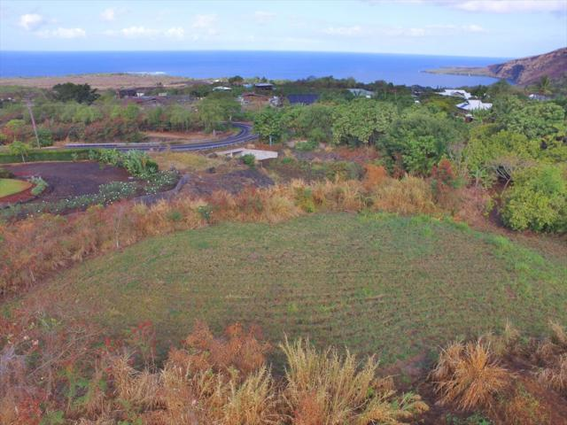 Kanele St, Captain Cook, HI 96704 (MLS #610163) :: Aloha Kona Realty, Inc.