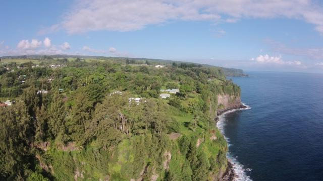 Old Mamalahoa Hwy, Papaaloa, HI 96780 (MLS #610182) :: Elite Pacific Properties
