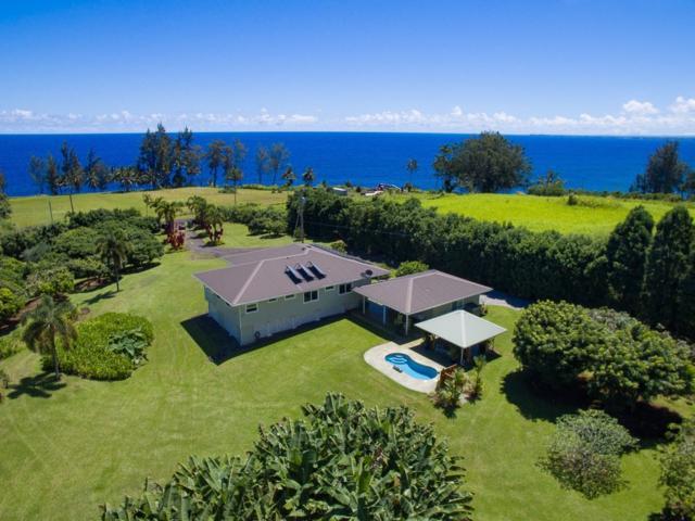 28-3017 Beach Rd, Pepeekeo, HI 96783 (MLS #610464) :: Elite Pacific Properties