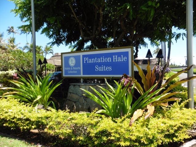 525 Aleka Lp, Kapaa, HI 96746 (MLS #610500) :: Kauai Exclusive Realty