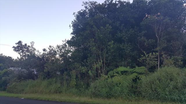Kolika Rd, Mountain View, HI 96771 (MLS #610702) :: Aloha Kona Realty, Inc.