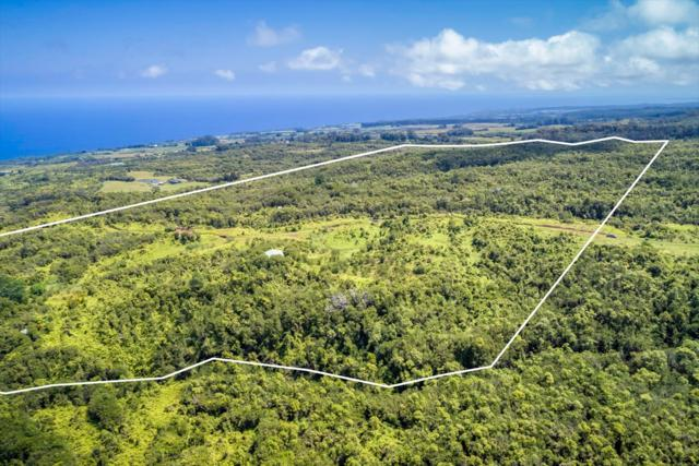 Address Not Published, Ninole, HI 96780 (MLS #610796) :: Elite Pacific Properties