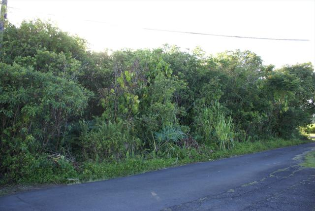Address Not Published, Hilo, HI 96720 (MLS #610828) :: Aloha Kona Realty, Inc.
