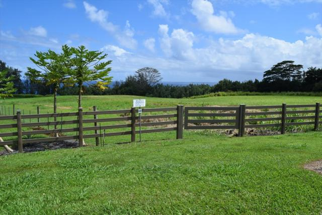 Loa Rd. Lot#79, Pepeekeo, HI 96783 (MLS #610981) :: Elite Pacific Properties