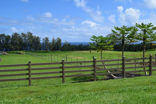 Loa Rd. Lot# 80, Pepeekeo, HI 96783 (MLS #610983) :: Elite Pacific Properties