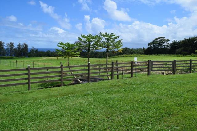 Loa Rd. Lot#77, Pepeekeo, HI 96783 (MLS #610990) :: Aloha Kona Realty, Inc.