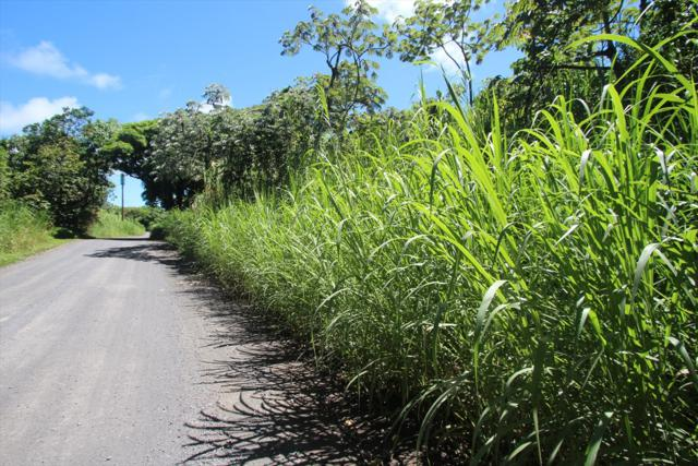Government Beach Rd, Pahoa, HI 96778 (MLS #611090) :: Aloha Kona Realty, Inc.