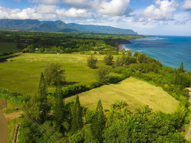 3700 Kilauea Rd, Kilauea, HI 96754 (MLS #611244) :: Kauai Exclusive Realty