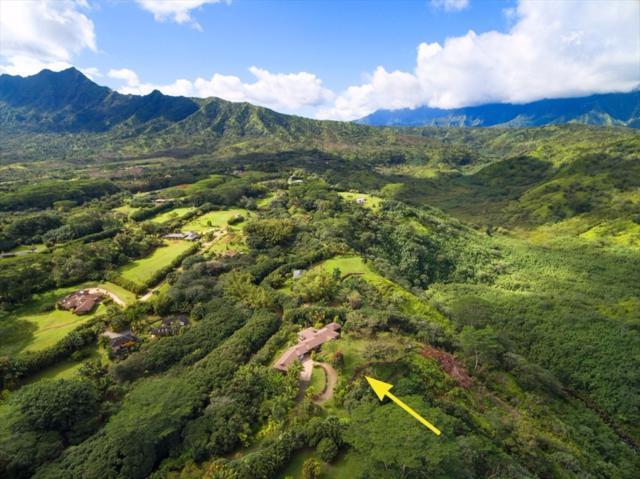 6213-#1 Kahiliholo Rd., Kilauea, HI 96754 (MLS #611294) :: Aloha Kona Realty, Inc.