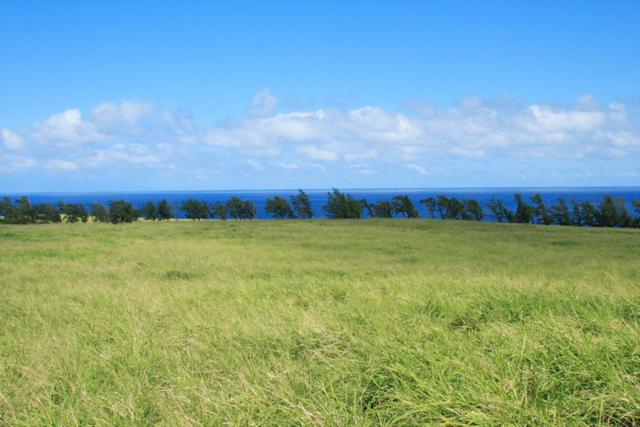 Address Not Published, Hawi, HI 96719 (MLS #611298) :: Corcoran Pacific Properties