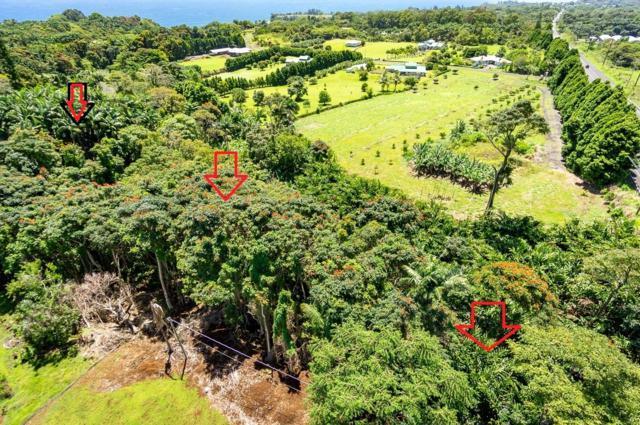 Address Not Published, Papaikou, HI 96781 (MLS #611417) :: Aloha Kona Realty, Inc.