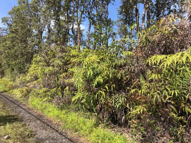 Road 11 (Pulelehua), Kurtistown, HI 96760 (MLS #611492) :: Aloha Kona Realty, Inc.