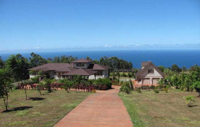 44-2249 Kaapahu Rd, Honokaa, HI 96727 (MLS #611533) :: Aloha Kona Realty, Inc.