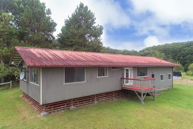 44-4770 Waikaalulu Rd, Honokaa, HI 96727 (MLS #611567) :: Aloha Kona Realty, Inc.