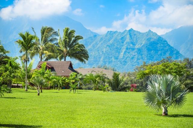 5164 Kahiliholo Rd, Kilauea, HI 96754 (MLS #611625) :: Aloha Kona Realty, Inc.
