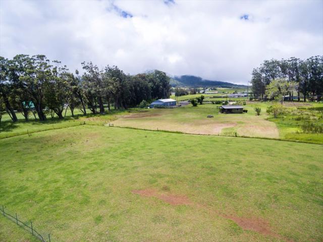 64-435 Mamalahoa Hwy, Kamuela, HI 96743 (MLS #611661) :: Aloha Kona Realty, Inc.