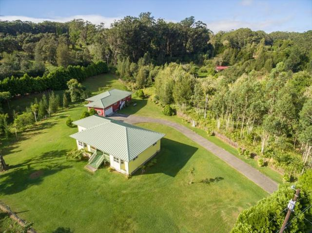 46-3931 Puaono Rd, Honokaa, HI 96727 (MLS #611739) :: Elite Pacific Properties