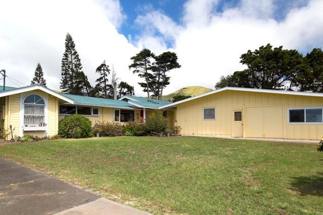 65-1552 Kawaihae Rd, Kamuela, HI 96743 (MLS #611918) :: Aloha Kona Realty, Inc.