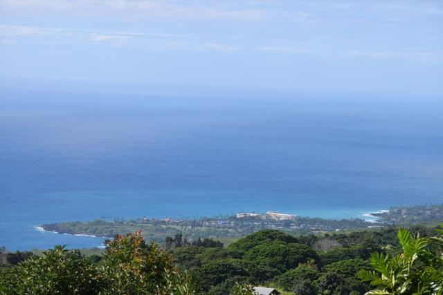 Address Not Published, Kealakekua, HI 96750 (MLS #612034) :: Aloha Kona Realty, Inc.