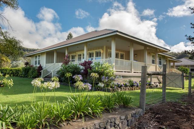 64-1006 Kaula Waha Pl, Kamuela, HI 96743 (MLS #612056) :: Aloha Kona Realty, Inc.
