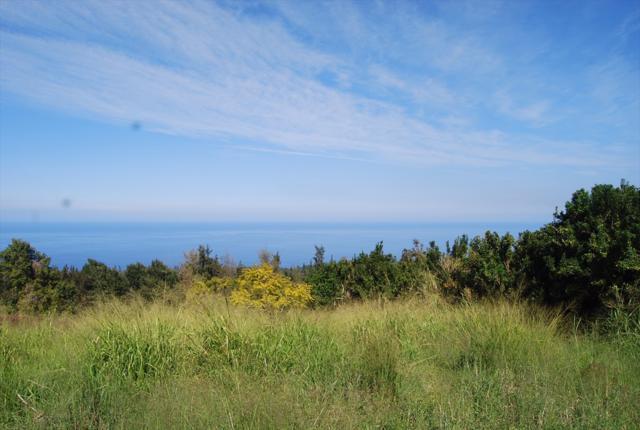 Address Not Published, Honokaa, HI 96727 (MLS #612545) :: Aloha Kona Realty, Inc.