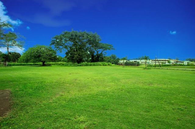 4534 Uahi Rd, Lihue, HI 96766 (MLS #612553) :: Kauai Exclusive Realty